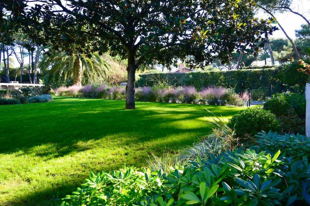 Jardin Patxi castro