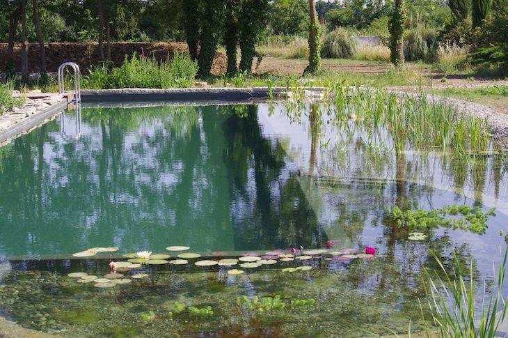piscine jardin Nature & Prestige