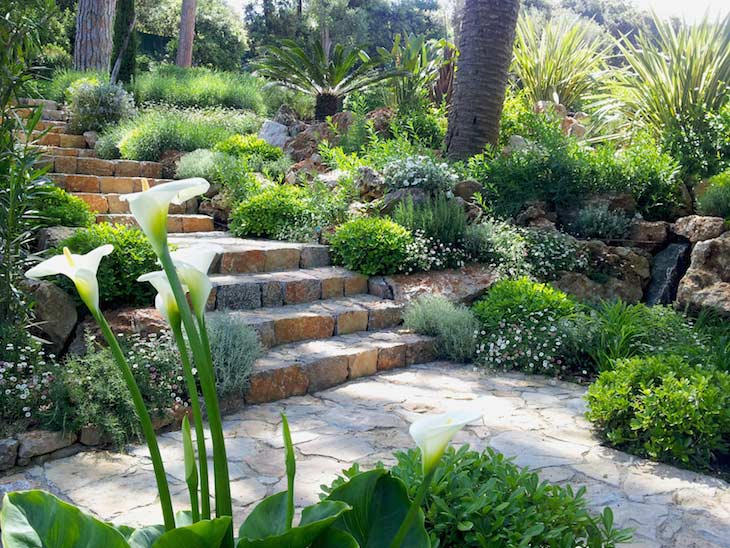 Escalier jardin Adonis Paysages